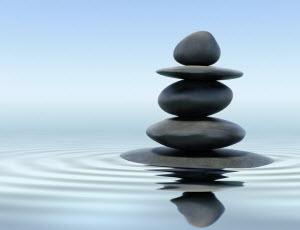 Zen Leadership Principles