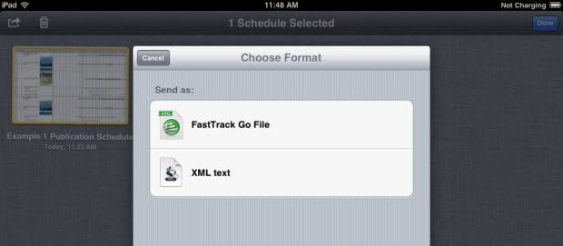 FastTrack Schedule Go - Choose File Format