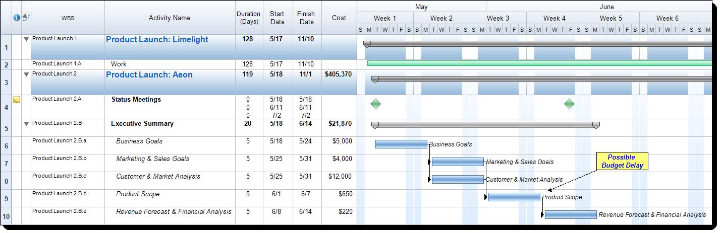 Work Breakdown Structure in FastTrack Schedule